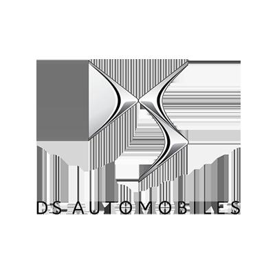 לוגו ds